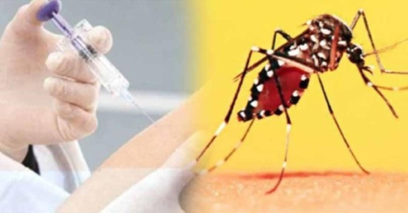 Febre amarela: Vacina é necessária para quem vai viajar