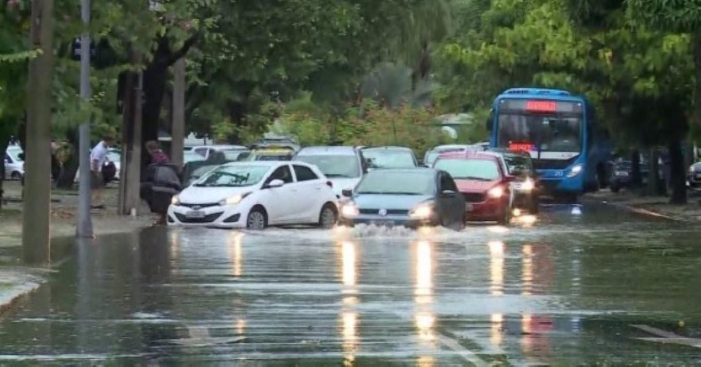 Chuva provoca queda de árvores e bloqueio de vias em SP