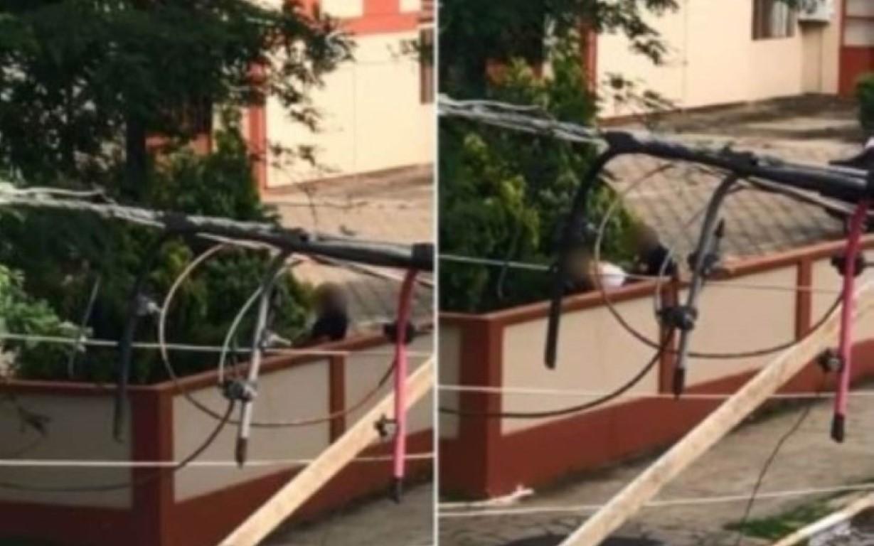 Policial é flagrado fazendo sexo no estacionamento de delegacia em Lages