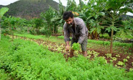 trabalhador rural INSS
